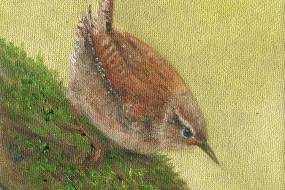 Add Artwork | Wallhanging by Lauren Bissell | Artists for Conservation
