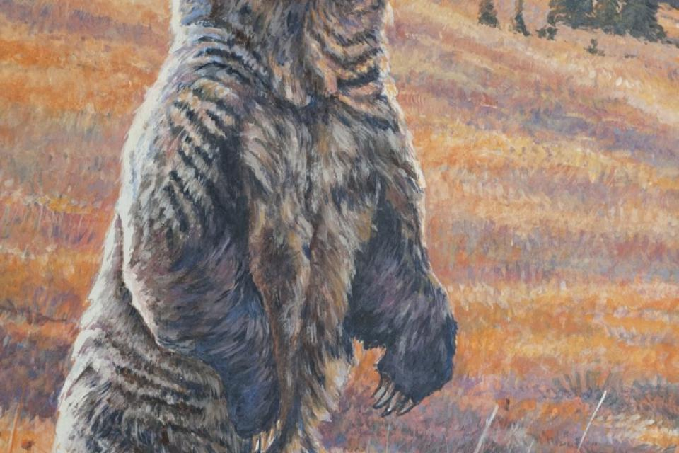 | Wallhanging by Peter Blackwell | Artists for Conservation