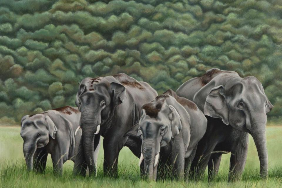 Edit Artwork   Wallhanging by Sunita Dhairyam   Artists for Conservation