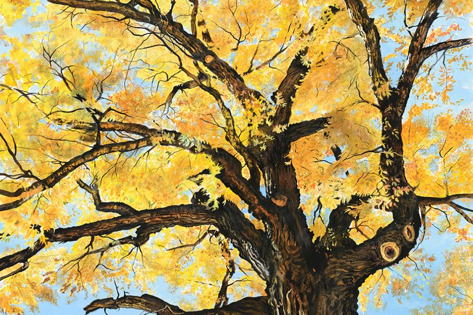 Add Artwork | Wallhanging by James Fiorentino | Artists for Conservation