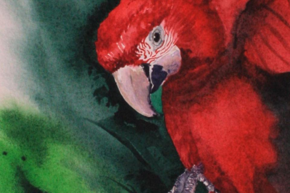 Edit Artwork | Wallhanging by Kitty Harvill | Artists for Conservation