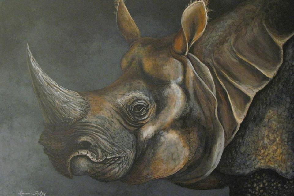 Add Artwork   Wallhanging by Laurie Riley   Artists for Conservation