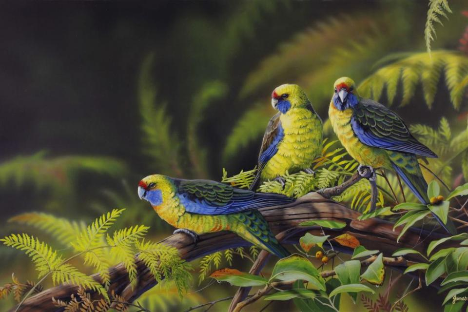 Edit Artwork   Wallhanging by James Hough   Artists for Conservation