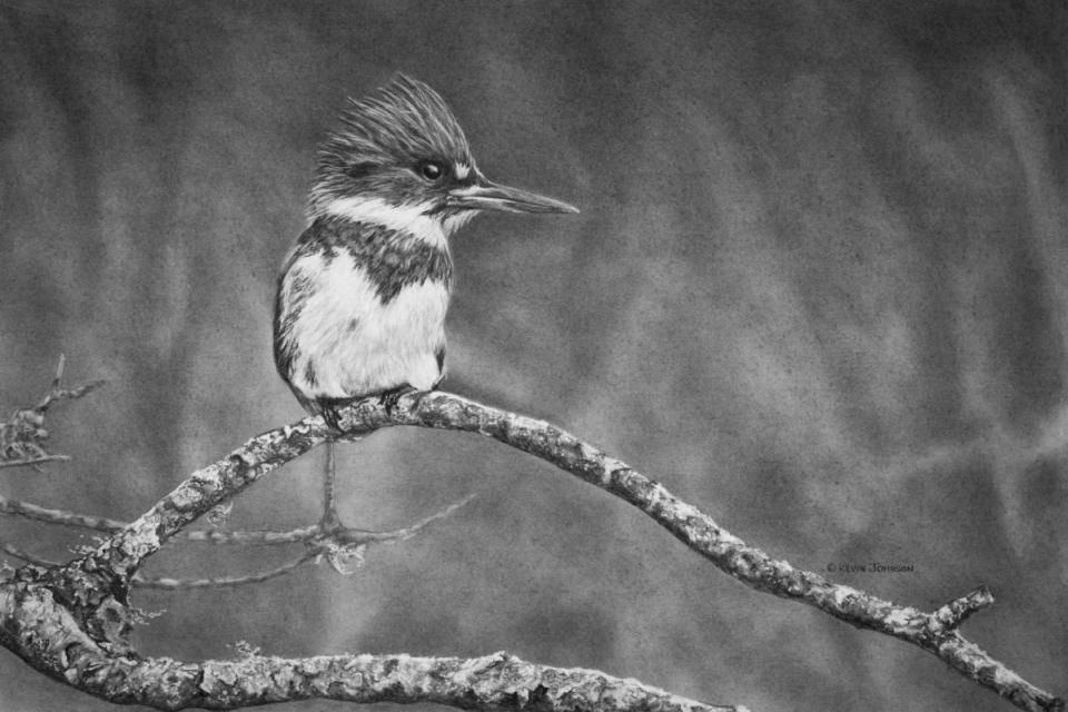 Add Artwork | Wallhanging by Kevin Johnson | Artists for Conservation