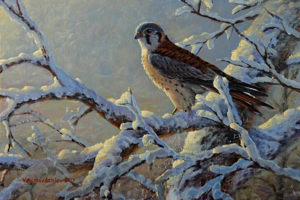 Add Artwork | Wallhanging by Valentin Katrandzhiev | Artists for Conservation