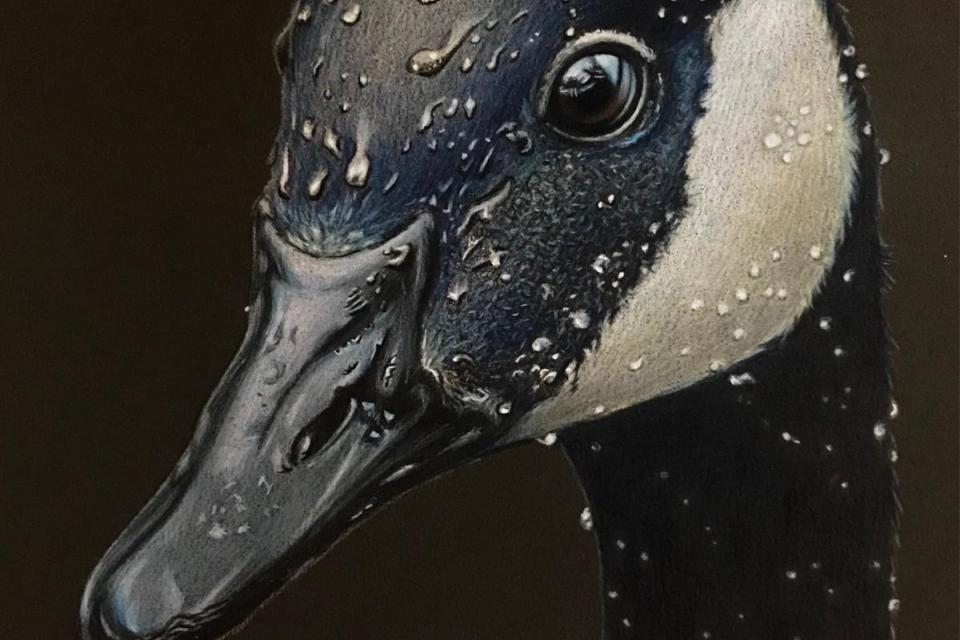 Add Artwork | Wallhanging by Ashley Roll | Artists for Conservation