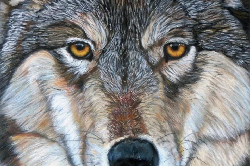 Edit Artwork   Wallhanging by Craig Lomas   Artists for Conservation