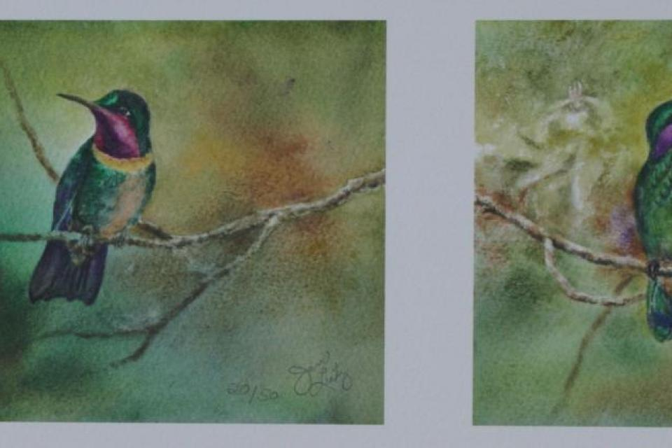 Add Artwork | Wallhanging by Jan Lutz | Artists for Conservation