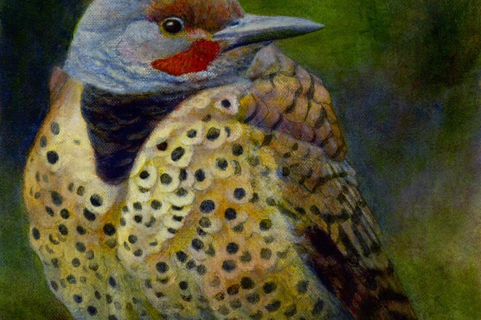 Add Artwork | Wallhanging by Kim Middleton | Artists for Conservation