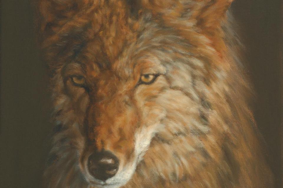 Edit Artwork | Wallhanging by Christina Dunzinger | Artists for Conservation
