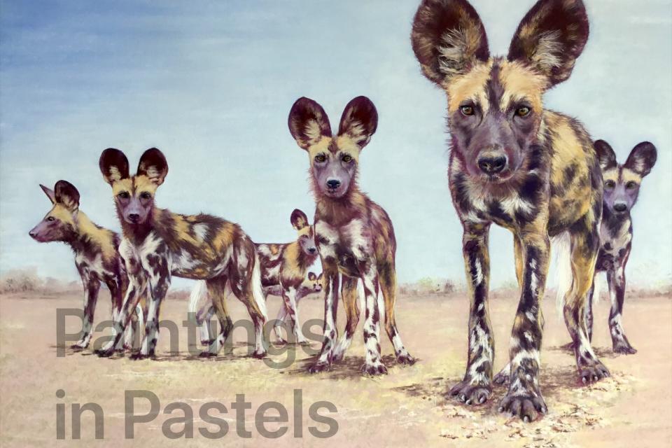 <em>Edit Conservation Project/Cause</em> Painting Dogs - African Wild Dogs   Sandra Jones
