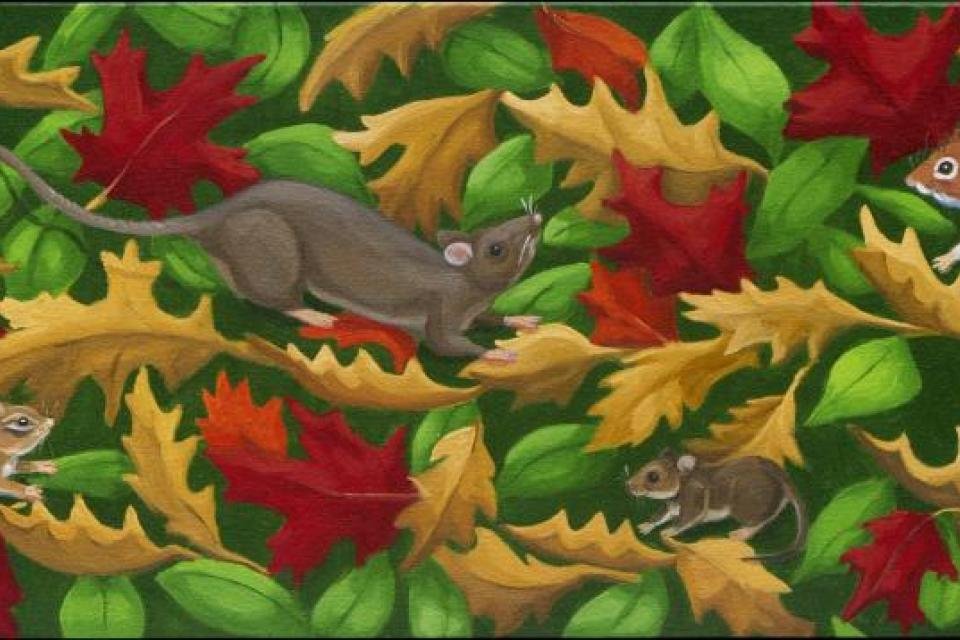 Add Artwork | Wallhanging by Janice Kasper | Artists for Conservation