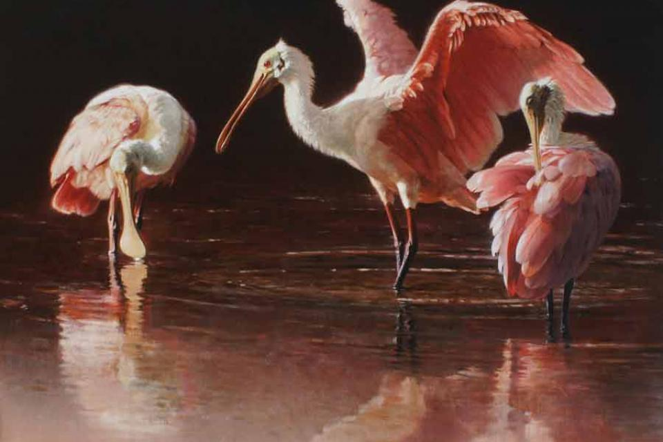 Add Artwork   Wallhanging by Patricia Pepin   Artists for Conservation