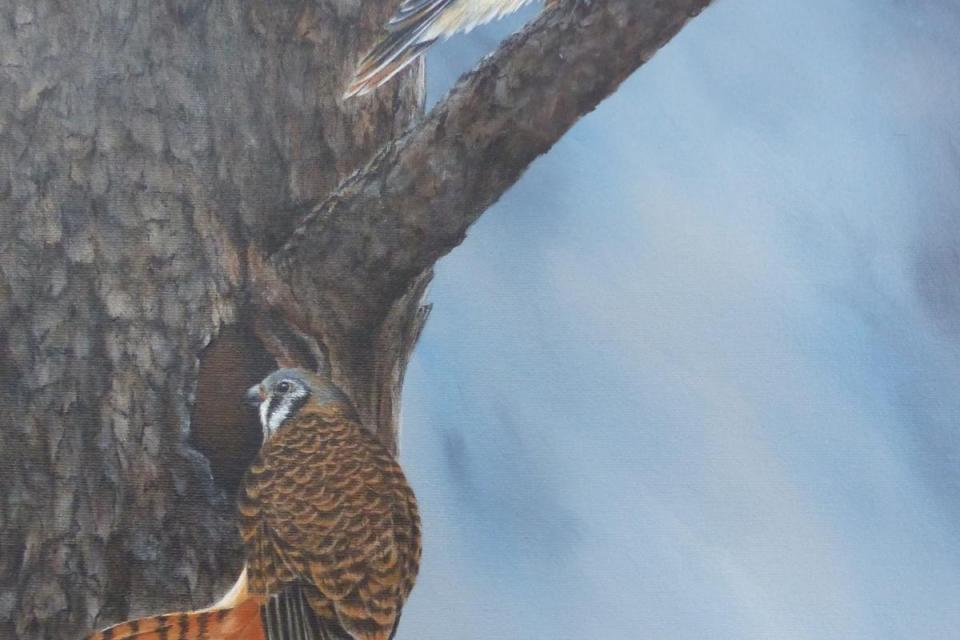 Edit Artwork | Wallhanging by Bobbie Crane | Artists for Conservation
