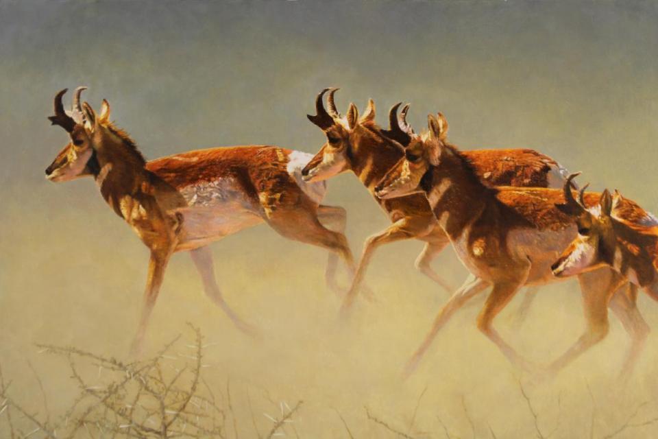 Edit Artwork   Wallhanging by Eleazar Saenz   Artists for Conservation