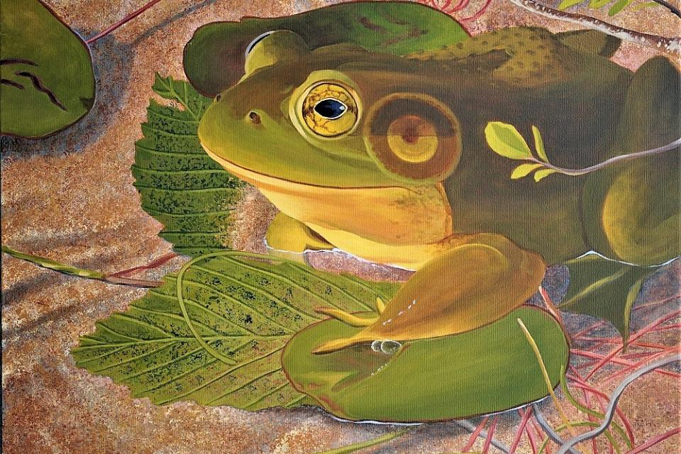   Wallhanging by Linda Sorensen   Artists for Conservation