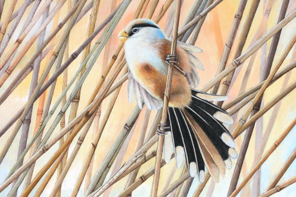Add Artwork | Wallhanging by Leo Xiang | Artists for Conservation