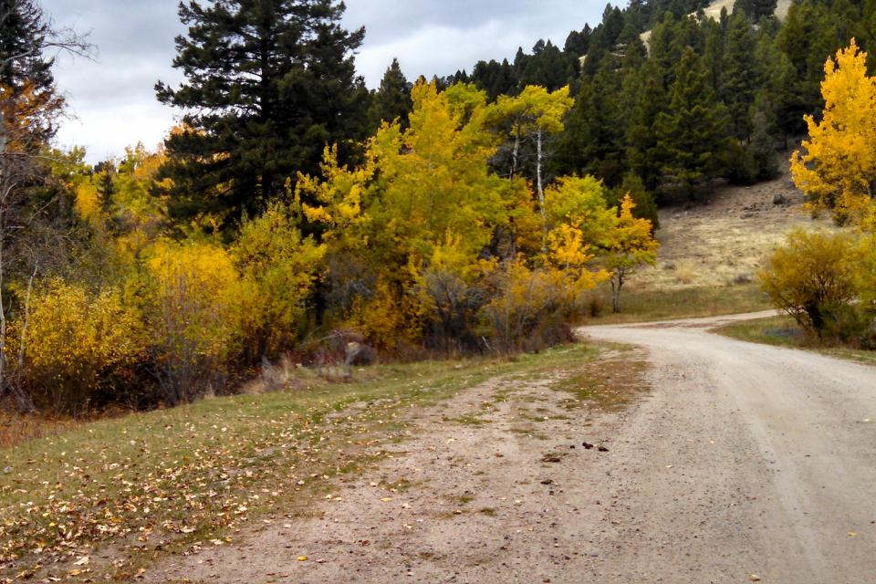 <em>Edit Conservation Project/Cause</em> Reclamation of Montana Mining Property -    Kimberly Wurster