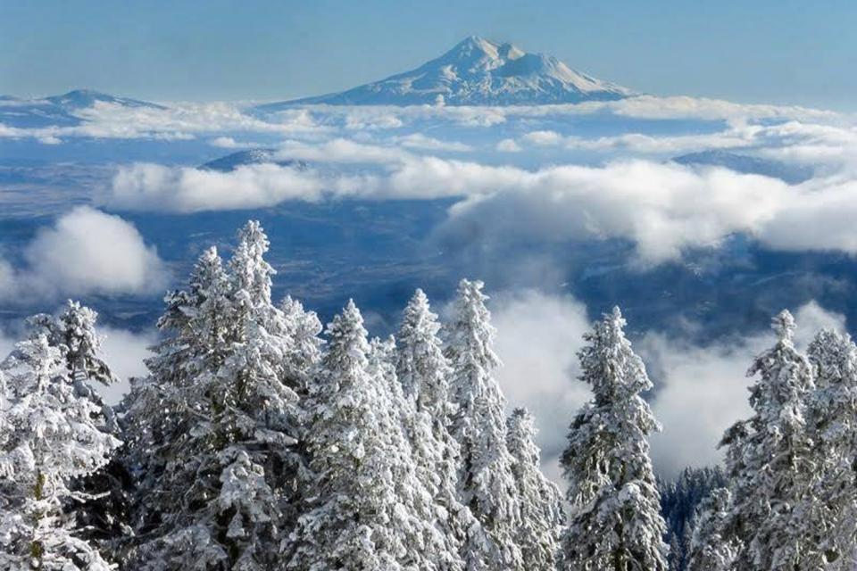 <em>Edit Conservation Project/Cause</em> Southern Oregon Land Conservancy -  | Pamela Haunschild