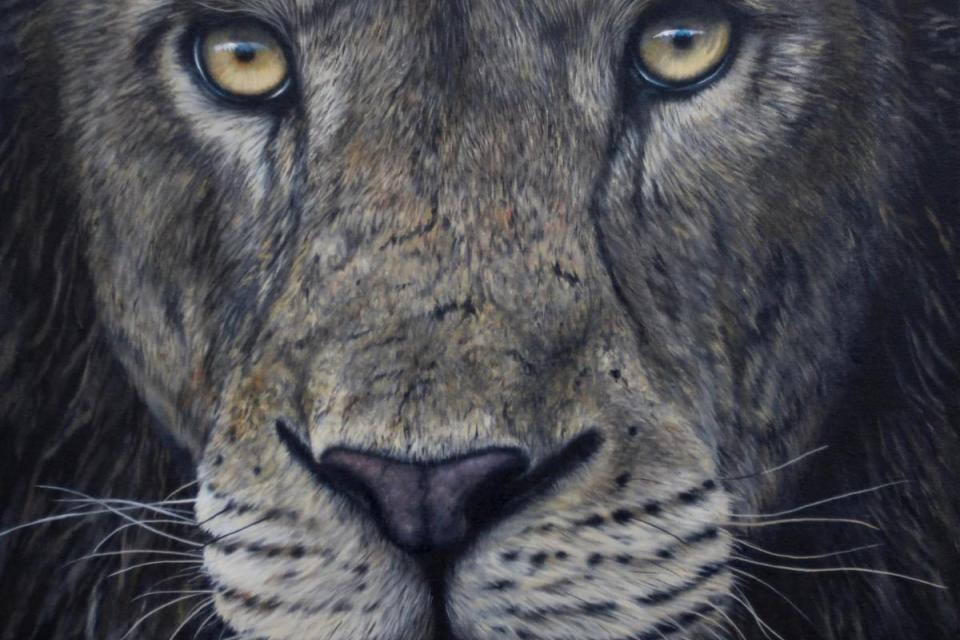 Add Artwork | Wallhanging by Jonathan Truss | Artists for Conservation