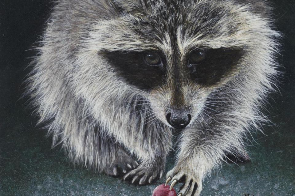 Add Artwork   Wallhanging by Lyn Vik   Artists for Conservation