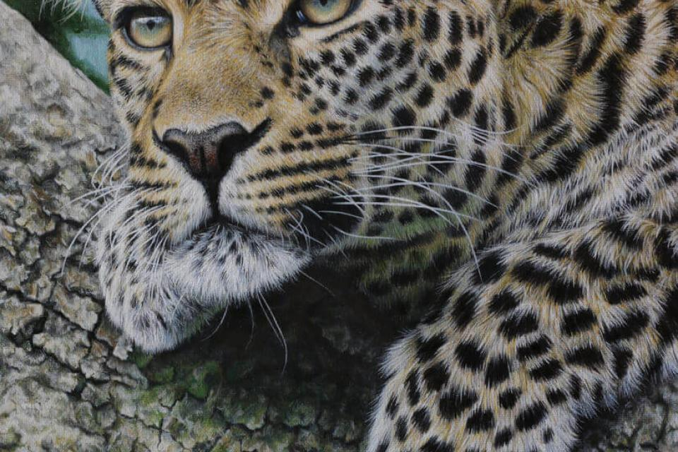 Edit Artwork   Wallhanging by Marco Grasso   Artists for Conservation