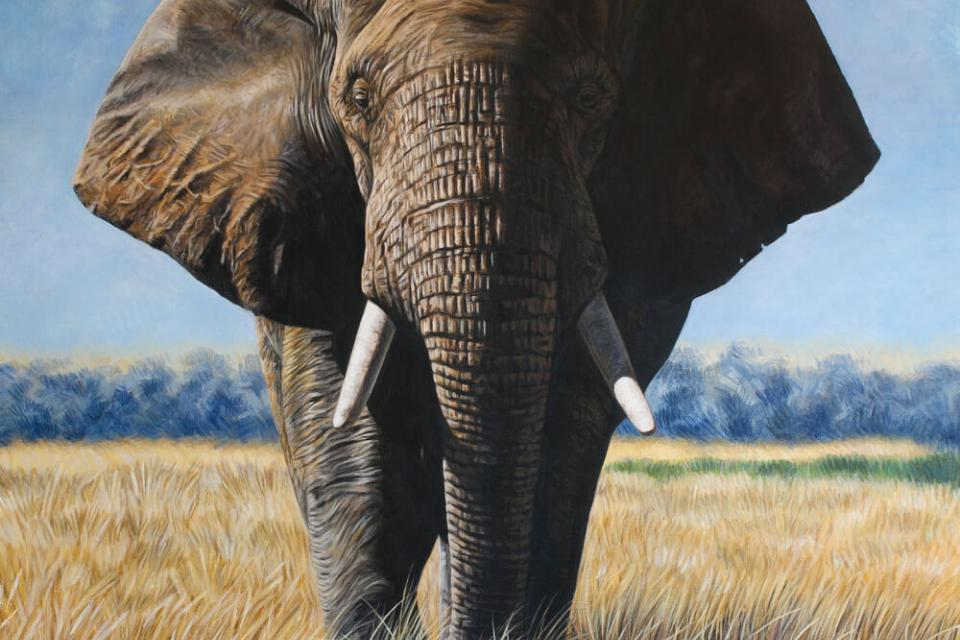 Add Artwork   Wallhanging by Marco Grasso   Artists for Conservation