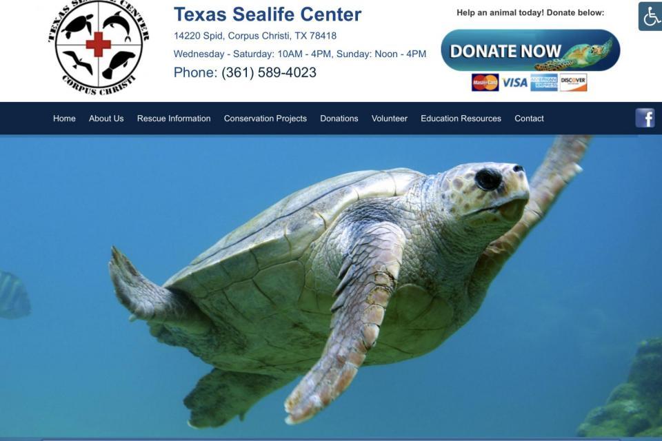 <em>Edit Conservation Project/Cause</em> The Texas Sealife Center - Corpus Christi, Texas | Jeffrey McDaniel