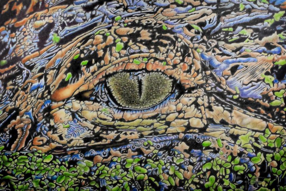 Edit Artwork | Wallhanging by John Guiseppi | Artists for Conservation