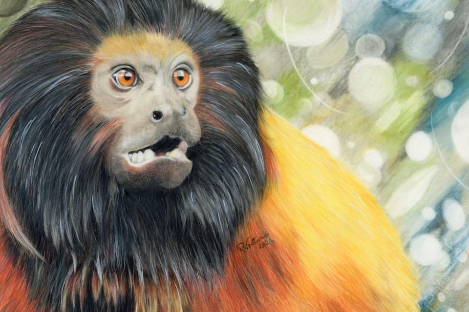 Edit Artwork   Wallhanging by Rosana Venturini   Artists for Conservation