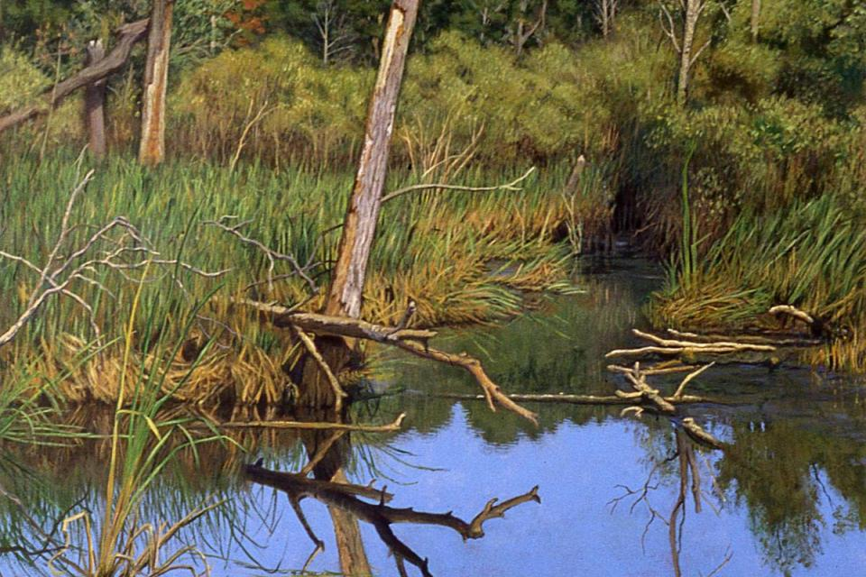 Add Artwork | Wallhanging by Randall Bennett | Artists for Conservation