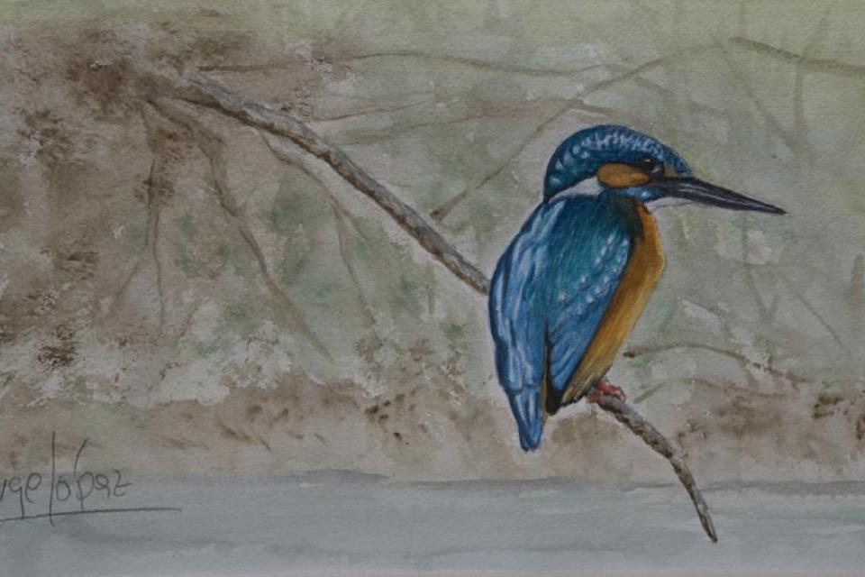 Edit Artwork   Wallhanging by Jorge Lopez Iglesias   Artists for Conservation