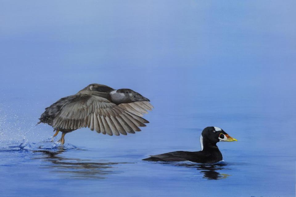 Edit Artwork | Wallhanging by Rhonda Franks | Artists for Conservation