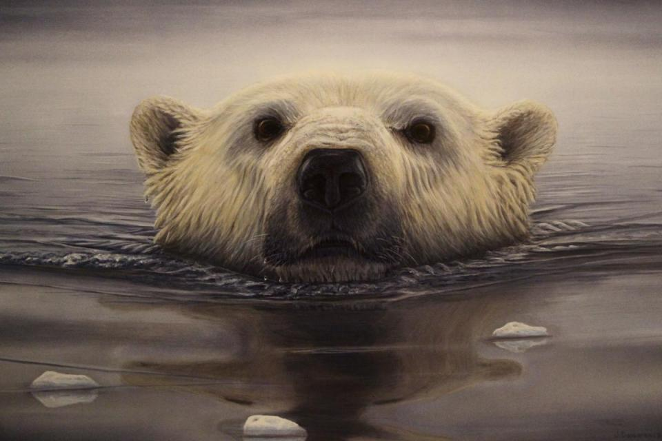 Edit Artwork | Wallhanging by Jodie Dansereau | Artists for Conservation
