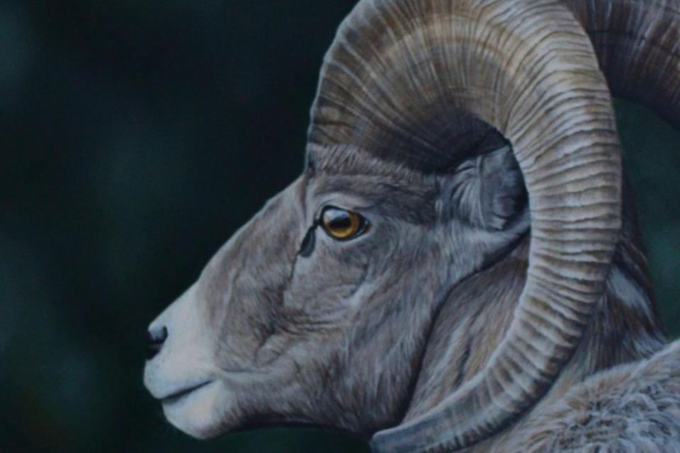 Add Artwork | Wallhanging by Jodie Dansereau | Artists for Conservation