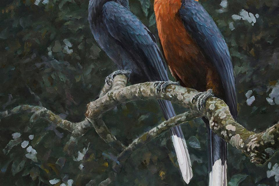 Add Artwork   Wallhanging by Chirag Thumbar   Artists for Conservation