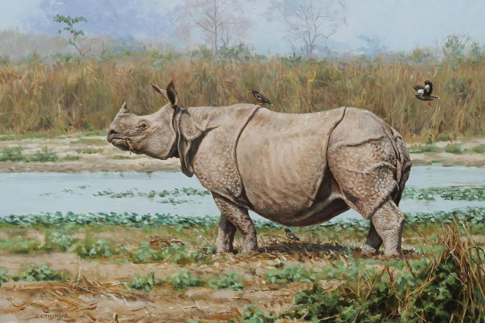 Edit Artwork   Wallhanging by Chirag Thumbar   Artists for Conservation