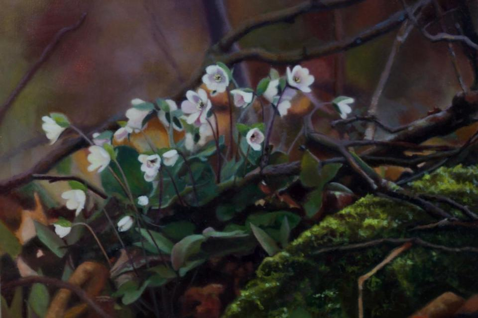 Edit Artwork | Wallhanging by Margit .Sampogna | Artists for Conservation