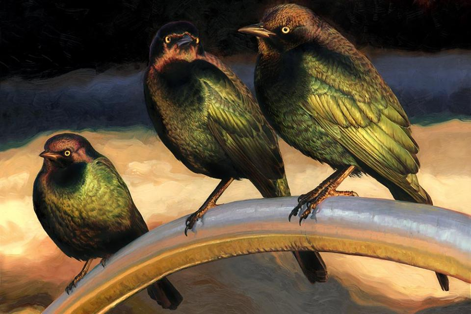 Add Artwork | Wallhanging by Jennifer Miller | Artists for Conservation