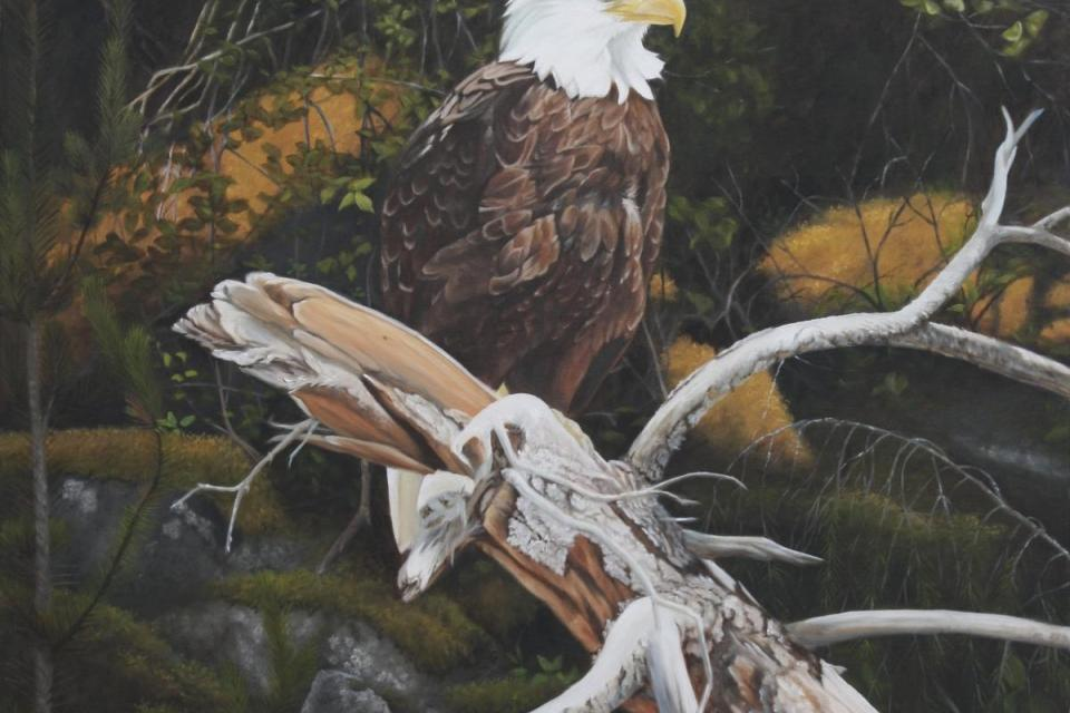   Wallhanging by Tammy Taylor   Artists for Conservation