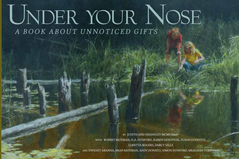 Create Conservation Project/Cause -  | Susan Gosevitz