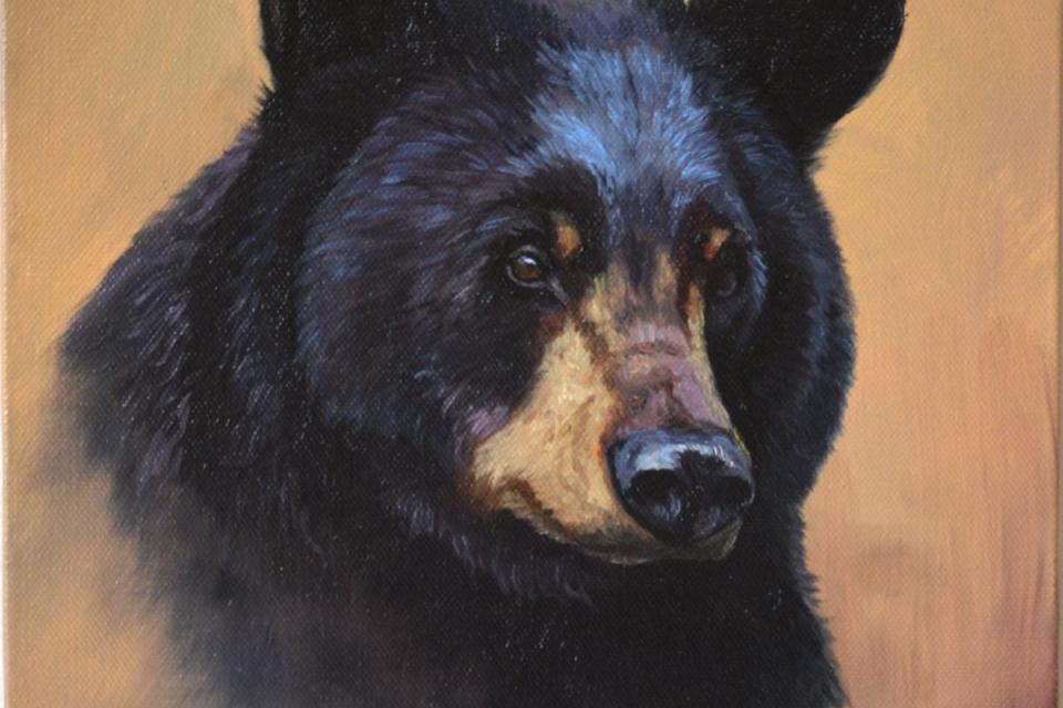 Add Artwork   Wallhanging by Suzanne Barrett Justis   Artists for Conservation