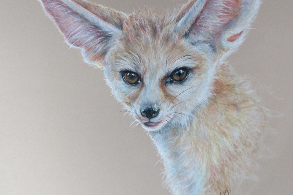 Add Artwork | Wallhanging by Linda Martin | Artists for Conservation