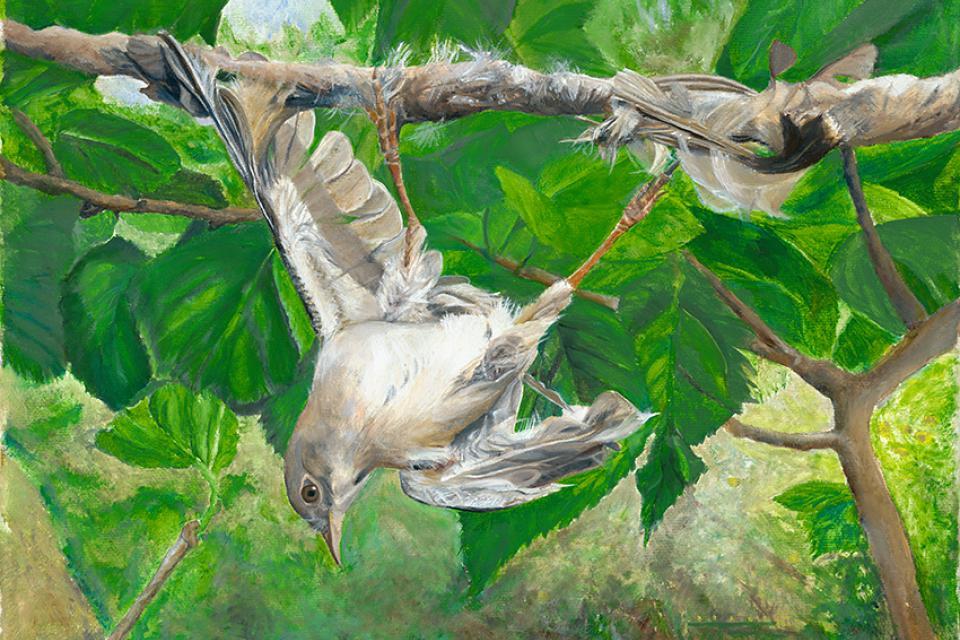 Edit Artwork | Wallhanging by Lynn Waltke | Artists for Conservation