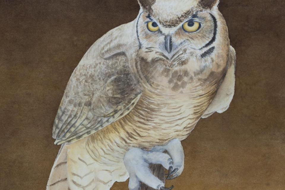 Add Artwork | Wallhanging by Kathy Kleinsteiber | Artists for Conservation