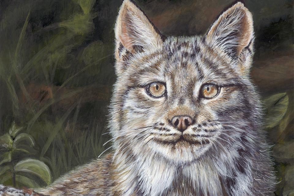 Edit Artwork   Wallhanging by Cher Anderson   Artists for Conservation