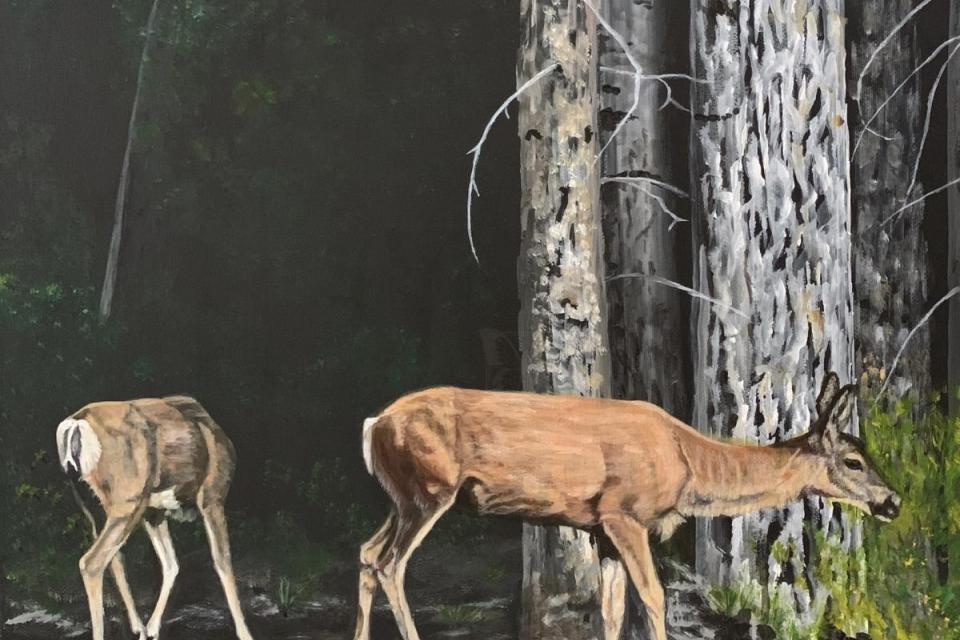 Edit Artwork   Wallhanging by Shirley Weiss   Artists for Conservation