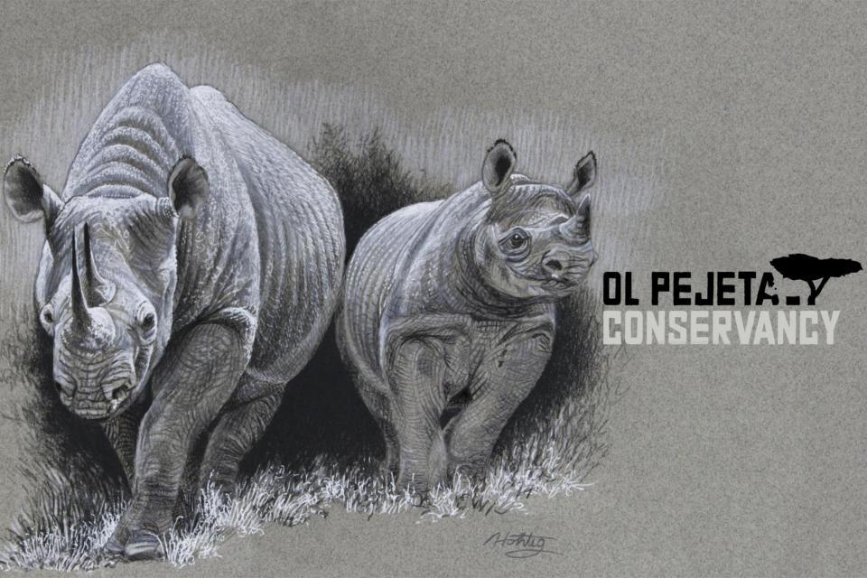 <em>Edit Conservation Project/Cause</em> Helping Rhinos - Art for Ol' Pejeta | Diana Hoehlig