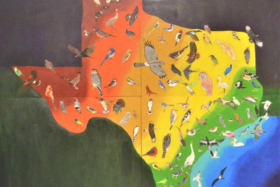 <em>Edit Conservation Project/Cause</em> Houston Audubon Raptor Center Murals - Hawks and Owls | Doug Hiser
