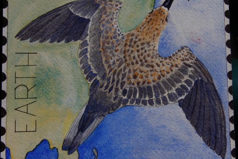 Edit Artwork   Wallhanging by Rob Butler   Artists for Conservation